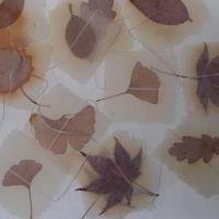 Girlande Herbstblätter